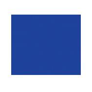 Ambassadors Football – Mexico Logo